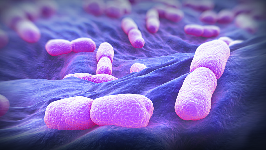 Listeria Infection