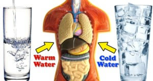 Cold Water Vs Warm Water