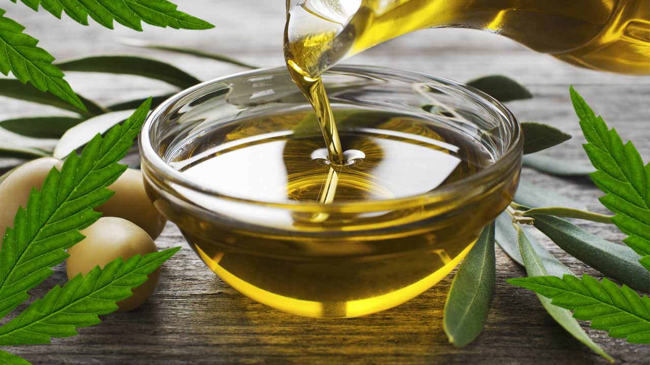 Cannabis Olive Oil Infusions